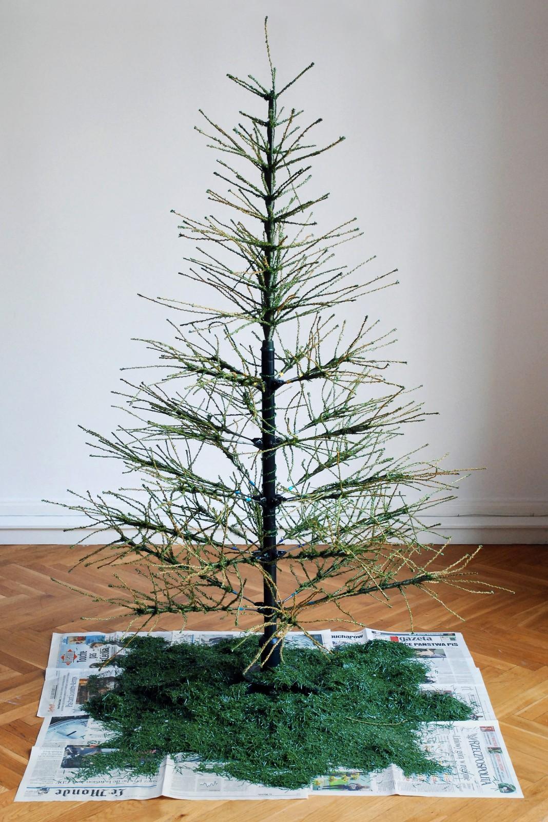 dawicki_christmas
