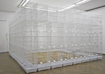 Galeria Arsenał 2008